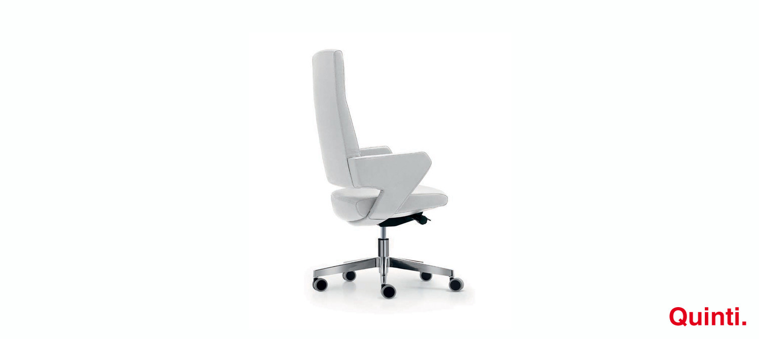 queen chair with high back, armrests and a loop base